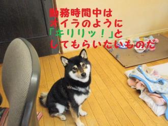 ・包シ包シ神convert_20090506233340