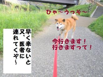 ・包シ呻シ神convert_20090509203404