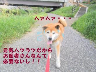 ・包シ呻シ撰シ神convert_20090509203552