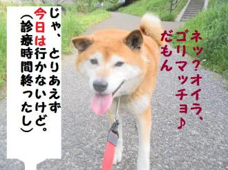 ・包シ呻シ胆convert_20090509203615