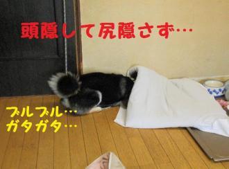 ・撰シ包シ托シ誉convert_20090517230157
