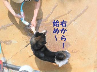 ・包シ抵シ托シ廟convert_20090522195923