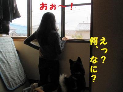 ・包シ抵シ費シ狙convert_20090524233424