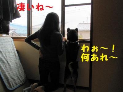 ・包シ抵シ費シ胆convert_20090524232928