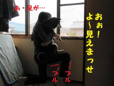 ・包シ抵シ費シ棒convert_20090524233114