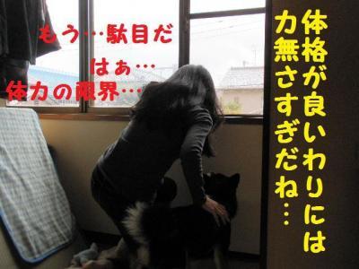 ・包シ抵シ費シ誉convert_20090524233137