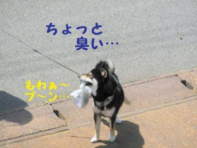 ・包シ抵シ棒convert_20090527220409