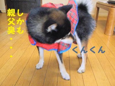 ・厄シ假シ神convert_20090609222039