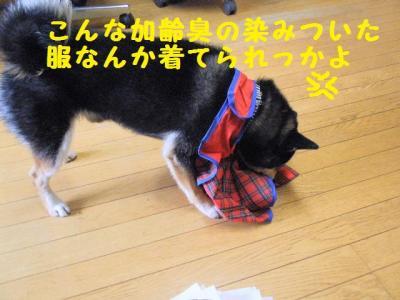 ・厄シ假シ胆convert_20090609222143