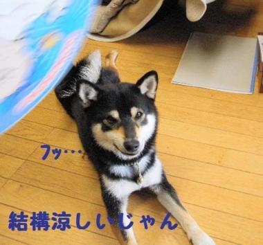 ・厄シ托シ誉convert_20090619224917