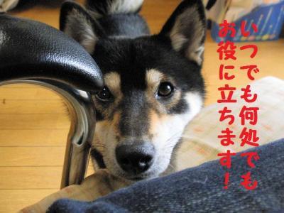 ・厄シ抵シ撰シ狙convert_20090624175003