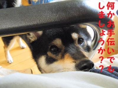 ・厄シ抵シ撰シ神convert_20090624175025