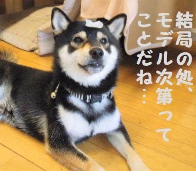 ・厄シ抵シ假シ狙convert_20090628201715