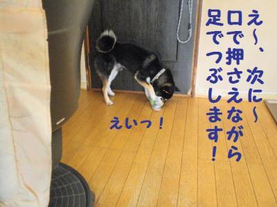 ・暦シ難シ胆convert_20090703231118
