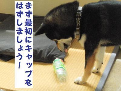 ・暦シ難シ狙convert_20090703231054