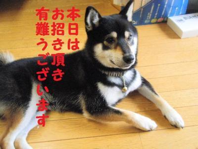 ・暦シ難シ棒convert_20090704004408