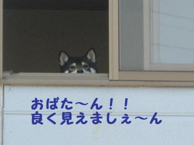 ・暦シ假シ狙convert_20090708225549