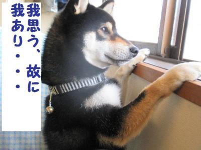 ・暦シ假シ神convert_20090708225614