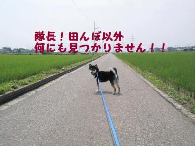 髫企聞_convert_20090712231319