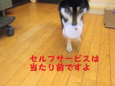・暦シ托シ費シ胆convert_20090714235842