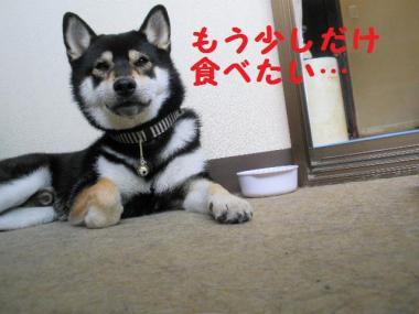 ・暦シ托シ農convert_20090714235647