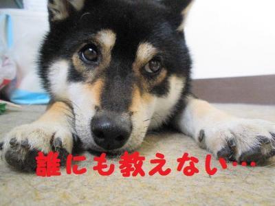 ・暦シ托シ呻シ点convert_20090718224825