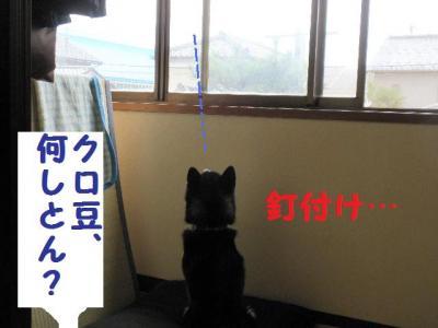 ・暦シ托シ呻シ神convert_20090718224627