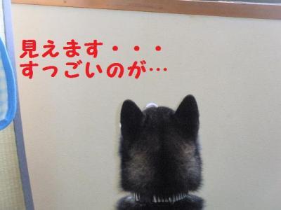 ・暦シ托シ呻シ狙convert_20090718224700