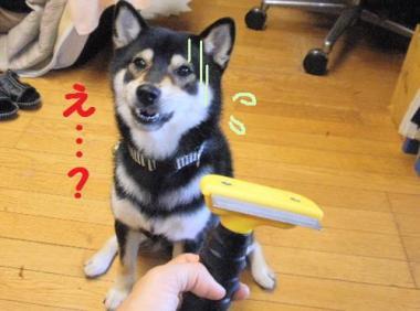 ・暦シ抵シ費シ神convert_20090724133756