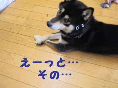 ・暦シ抵シ包シ神convert_20090726044307