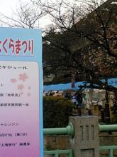 asiyasakura1.jpg