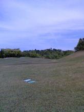 golf0605a1.jpg