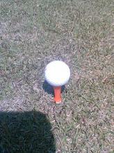 golf0605b1.jpg