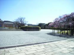 kyoto0603a1.jpg