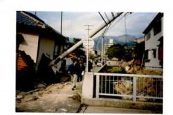 sinsai3.jpg