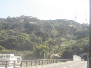20060401050534.jpg