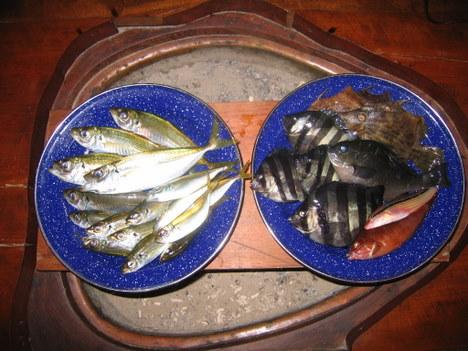 慶子大漁 004