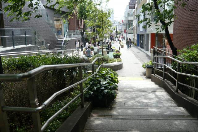 裏原宿のキャット・ストリート!