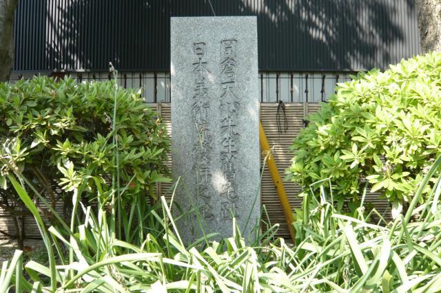 okakura_tenshin01.jpg