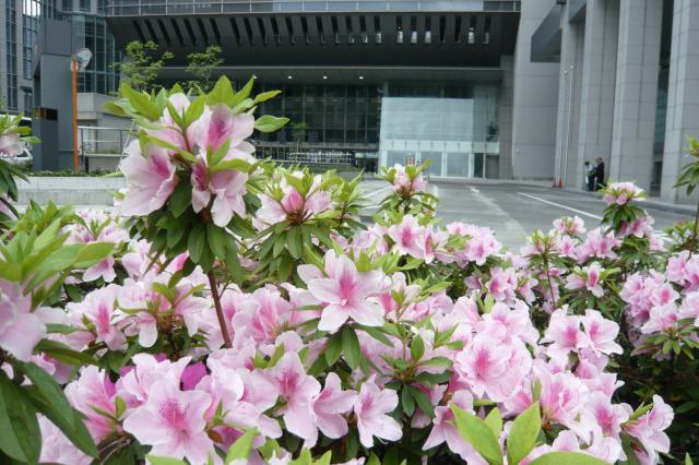 東京駅八重洲北口にあります!