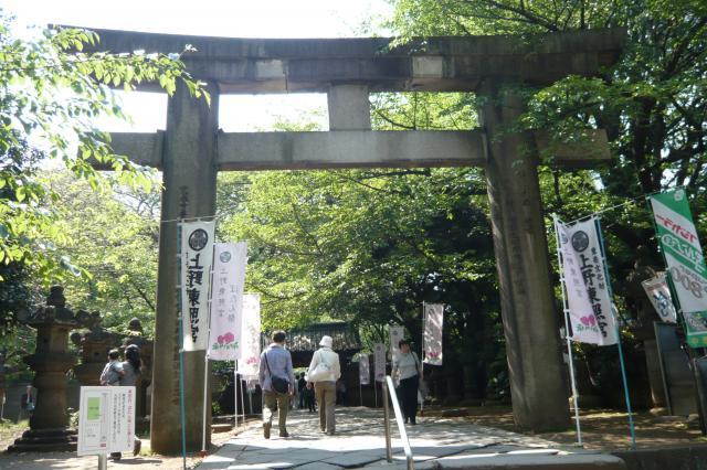 せっかくなので上野東照宮へ・・・