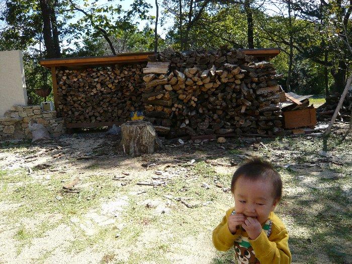 2011_10032011夏0019