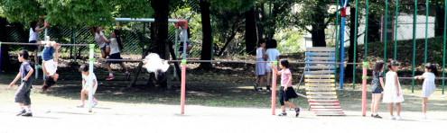 2009_09_01_001.jpg
