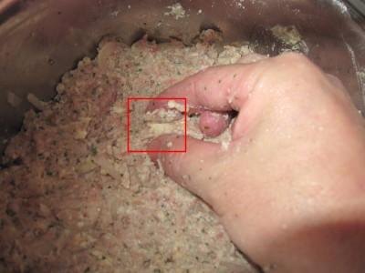 豆腐ハンバーグ (12)