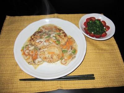 豆腐ハンバーグ (23)