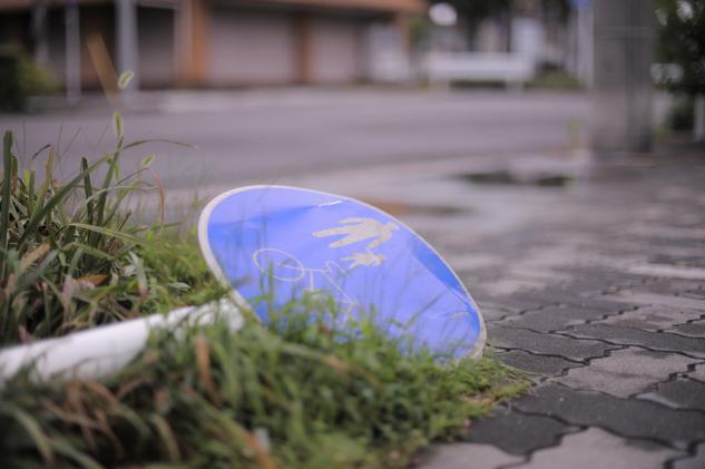 2011-09-04_5184.jpg
