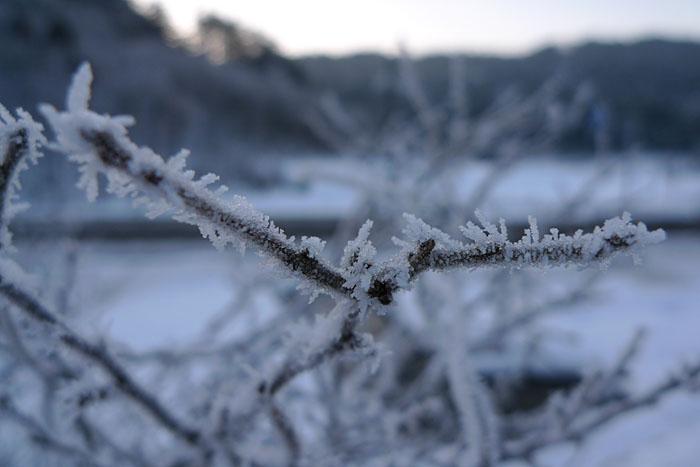 霧氷 厳冬 冬の飛騨高山 日之本元極 気功教室