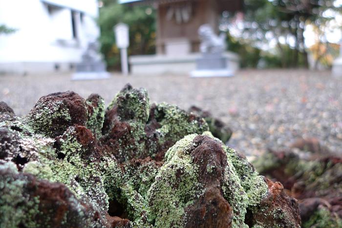千葉県 安房神社 日之本元極 関東