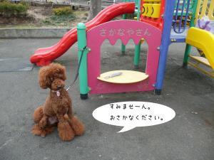20100215-03.jpg