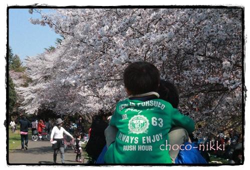 2012 お花見②